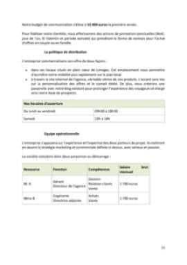 Business Plan Agence-de-voyage Page 11
