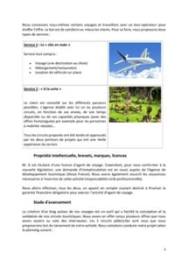 Business Plan Agence-de-voyage Page 5