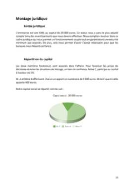 Business Plan Agence-evenementielle Page 13