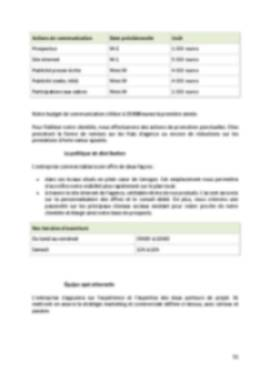 Business Plan Agence-immobiliere Page 11