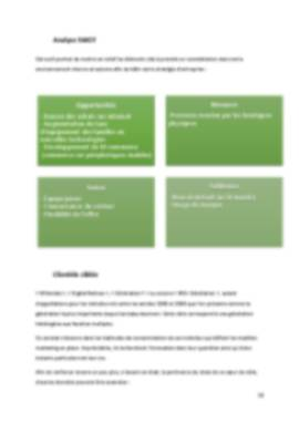 Business Plan Application-mobile Page 10