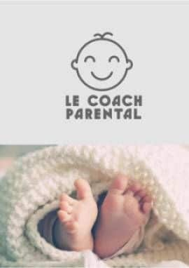 Business Plan Baby-planner-coach-parental Page 0