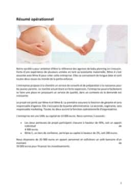 Business Plan Baby-planner-coach-parental Page 2
