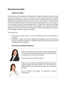 Business Plan Baby-planner-coach-parental Page 3