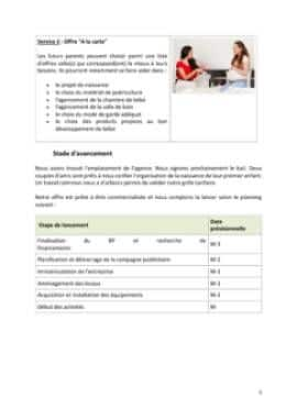 Business Plan Baby-planner-coach-parental Page 5