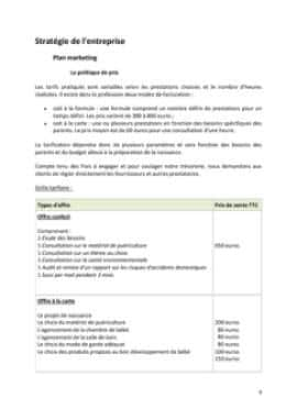 Business Plan Baby-planner-coach-parental Page 9