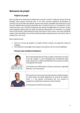 Business Plan Bar-a-theme-bar-a-vins Page 3