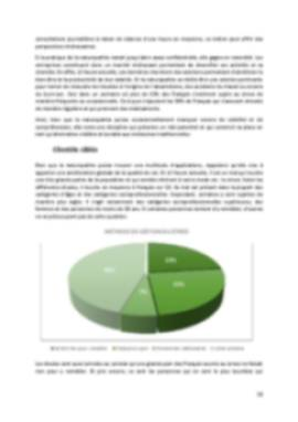 Business Plan Cabinet-de-naturopathie Page 10