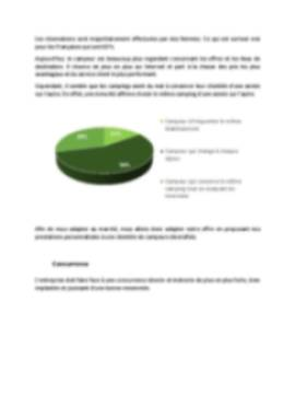 Business Plan Camping Page 11