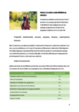 Business Plan Centre-equestre Page 6