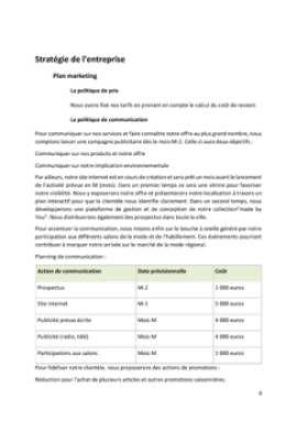 Business Plan Commerce-de-pret-a-porter Page 8