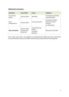 Business Plan Conciergerie-pour-particuliers-et-entreprises Page 9
