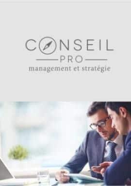 Business Plan Consultant-en-management-et-strategie-dentreprise Page 0