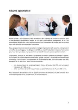 Business Plan Consultant-en-management-et-strategie-dentreprise Page 2