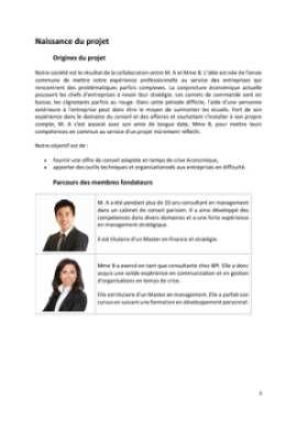 Business Plan Consultant-en-management-et-strategie-dentreprise Page 3