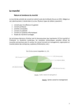 Business Plan Consultant-en-management-et-strategie-dentreprise Page 7