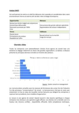 Business Plan Consultant-en-management-et-strategie-dentreprise Page 8