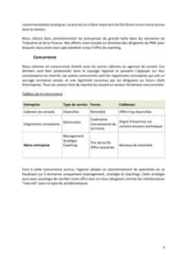 Business Plan Consultant-en-management-et-strategie-dentreprise Page 9