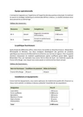 Business Plan Diagnostic-immobilier-de-performance-energetique Page 10
