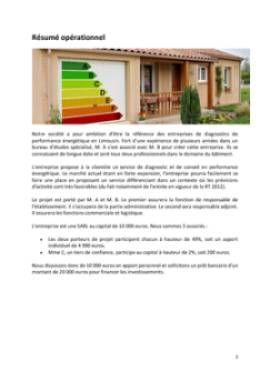 Business Plan Diagnostic-immobilier-de-performance-energetique Page 2