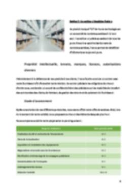 Business Plan Dropshipping Page 6
