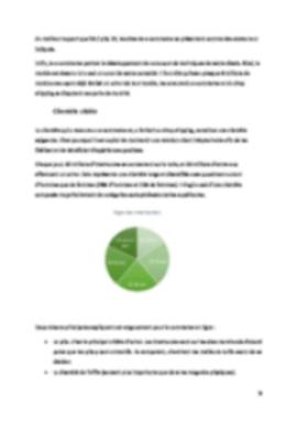 Business Plan Dropshipping Page 8
