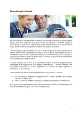 Business Plan E-commerce-vente-en-ligne Page 2