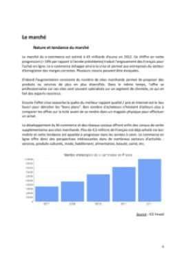 Business Plan E-commerce-vente-en-ligne Page 6