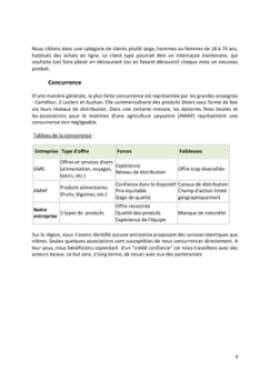 Business Plan E-commerce-vente-en-ligne Page 9