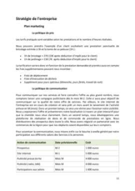 Business Plan Entreprise-de-bricolage-et-de-jardinage Page 11