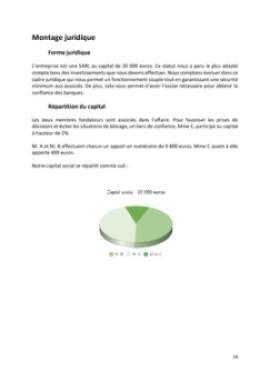 Business Plan Entreprise-de-bricolage-et-de-jardinage Page 14