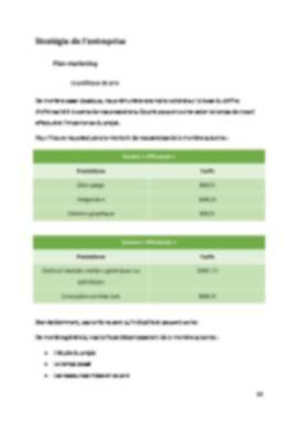 Business Plan Entreprise-informatique-ssii Page 12