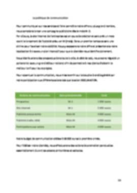 Business Plan Entreprise-informatique-ssii Page 13