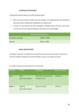 Business Plan Entreprise-informatique-ssii Page 14