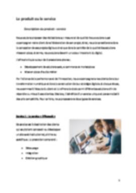 Business Plan Entreprise-informatique-ssii Page 5