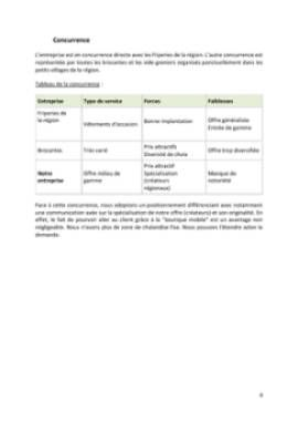 Business Plan Fashion-trucks-camions-vetements Page 8