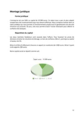 Business Plan Home-staging-decorateur-dinterieur Page 12