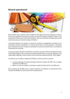 Business Plan Home-staging-decorateur-dinterieur Page 2
