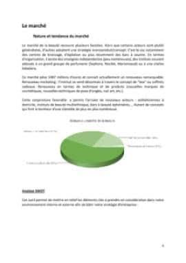 Business Plan Institut-de-beaute Page 6