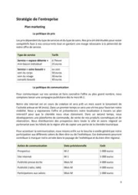 Business Plan Institut-de-beaute Page 9
