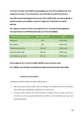 Business Plan Jeux-video Page 13