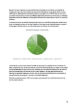 Business Plan Laser-game Page 10