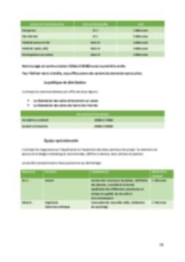 Business Plan Laser-game Page 13