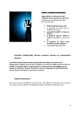Business Plan Laser-game Page 5