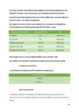 Business Plan Laverie-automatique Page 14