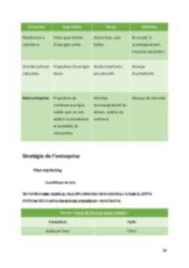 Business Plan Librairie Page 11