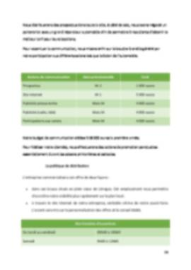 Business Plan Location-voiture Page 14