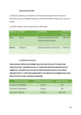 Business Plan Location-voiture Page 15