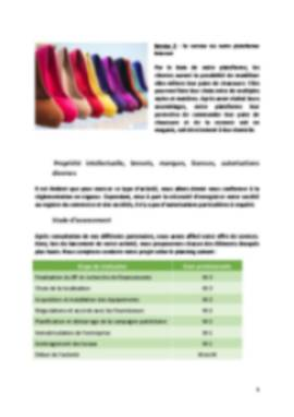 Business Plan Magasin-de-chaussures Page 5