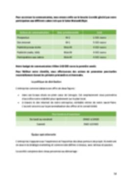 Business Plan Magasin-decoration Page 12